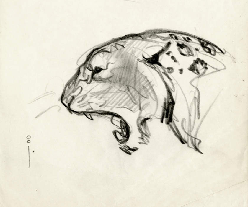 Frazetta cat head